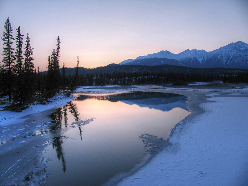 Cold Athabasca River near Jasper